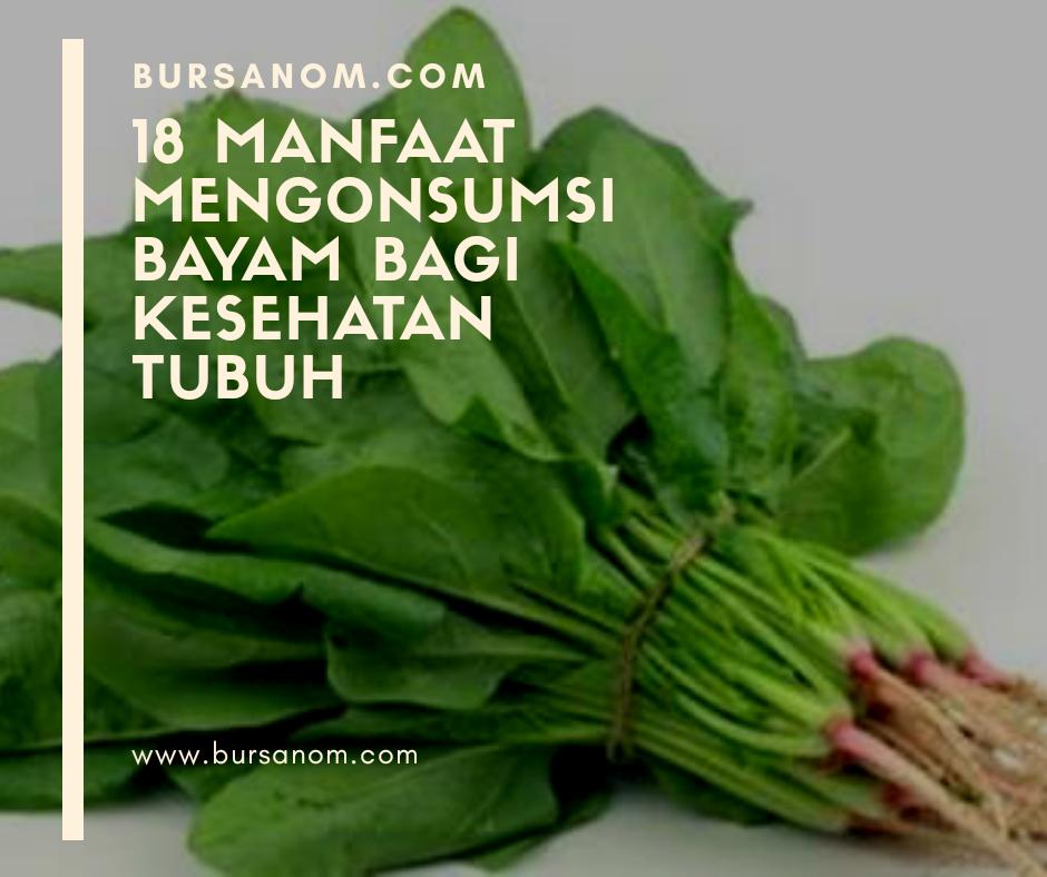 - Bursanom.com