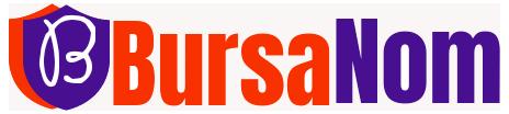 Bursanom.com